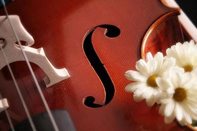 Atlanta String Duo